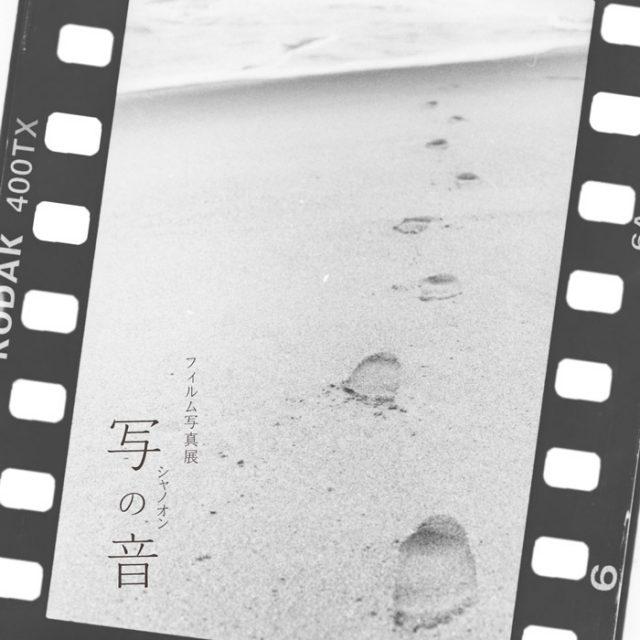 11/10.木〜『写の音』ニチデ仙台校 写真映像科フィルム写真展